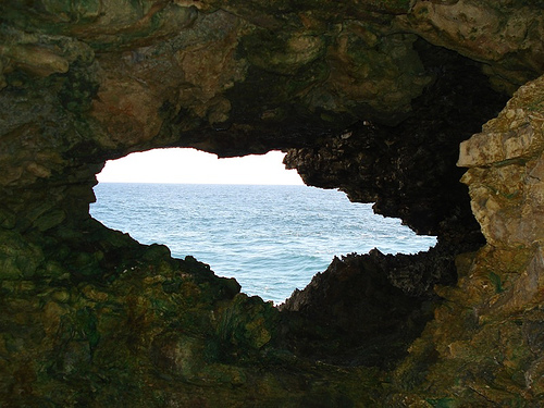 Attraits touristiques en Barbade : Animal Flower Cave